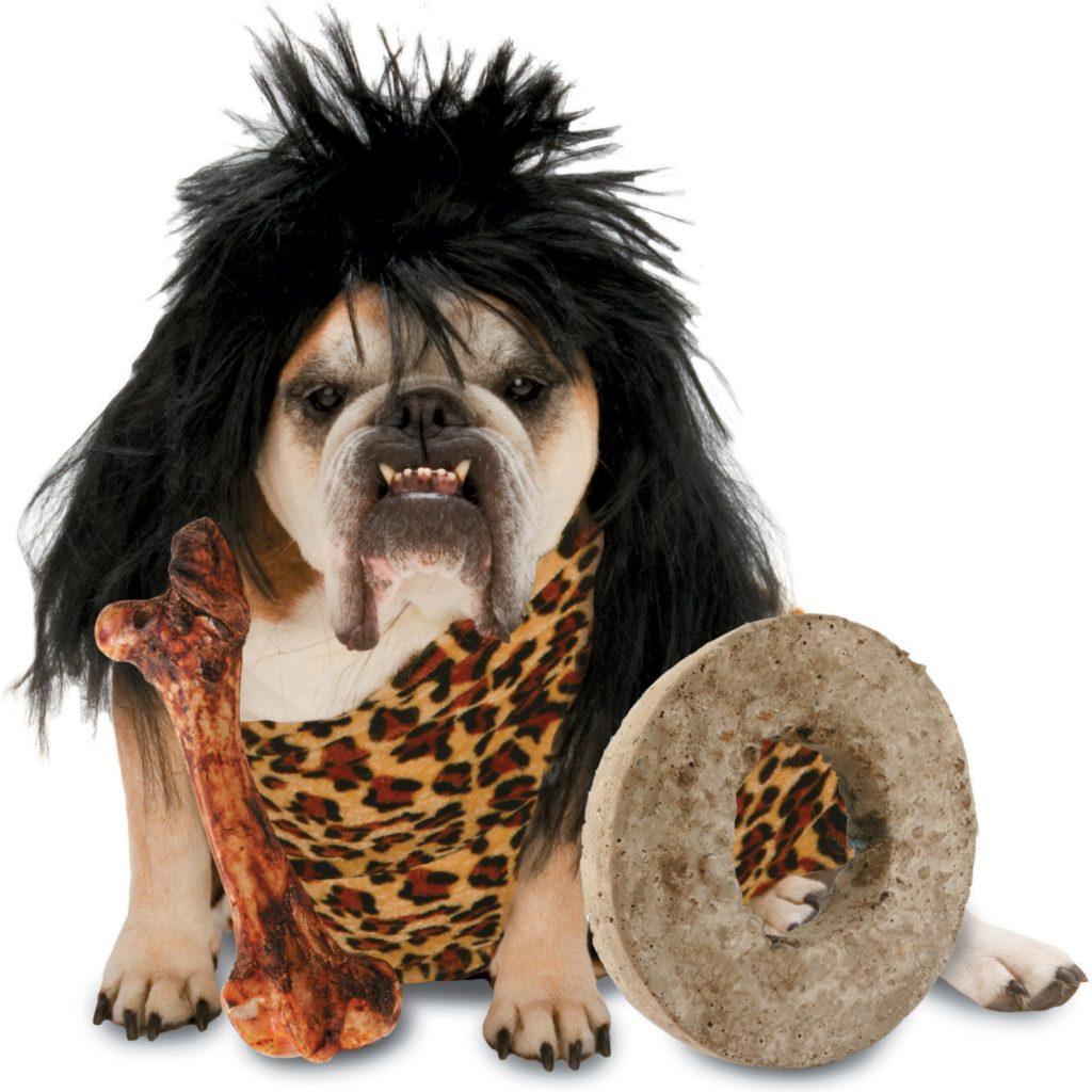 stone age. dog costumes  sc 1 st  FreshBoo & 50 Absolutely Amazing Dog Costume Ideas