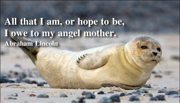 My Angel Mother Quote