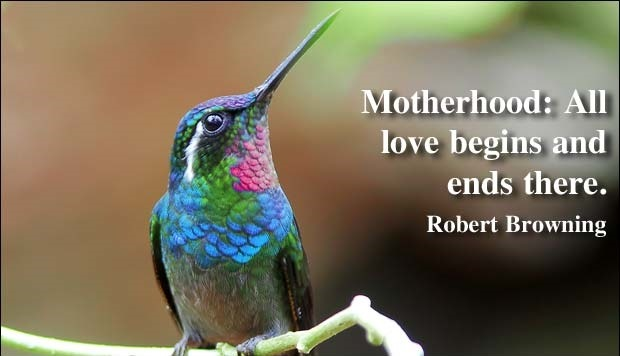 Mothers day quotes by robert browning
