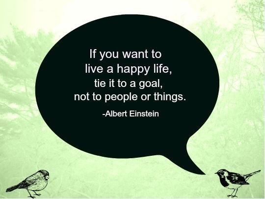 einstein Happiness Quotes